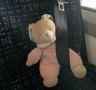 Den vesle rosa bamsen var godt sikra i setet, på bussturen mellom Ropeid og Sauda måndag ettermiddag. Nå etterlyser bussjåføren eigaren av den etterlatte «passasjeren»