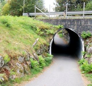 Politiet har fått tips etter at ein syklist blei køyrt over ende like ved denne undergangen på  gang- og sykkelvegen mellom Rustå og Gunnarsmoen.